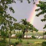 Ein Regenbogen macht dann alles wieder schön