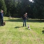 Baira testet Cody´s Hundeschullehrer