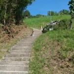 die Treppe in Berneck mit ca 700 Stufen