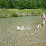 Wasserspiele mit Chef